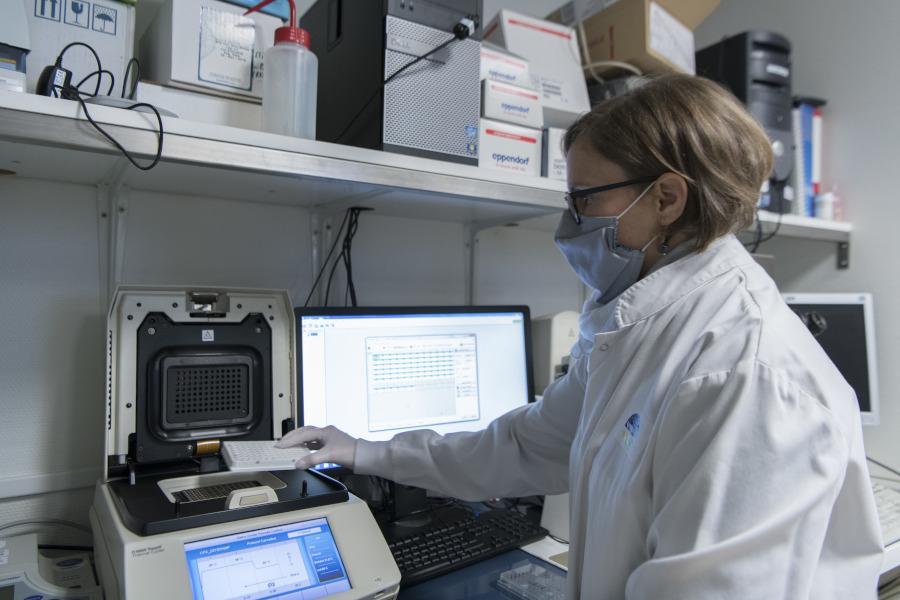 Mesure de l'expression de gènes induits par les cytokines de l'inflammation dans des cellules d'articulation de polyarthrite.
